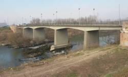 sandon ponte