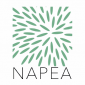 Napea